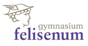 felisenum-logo